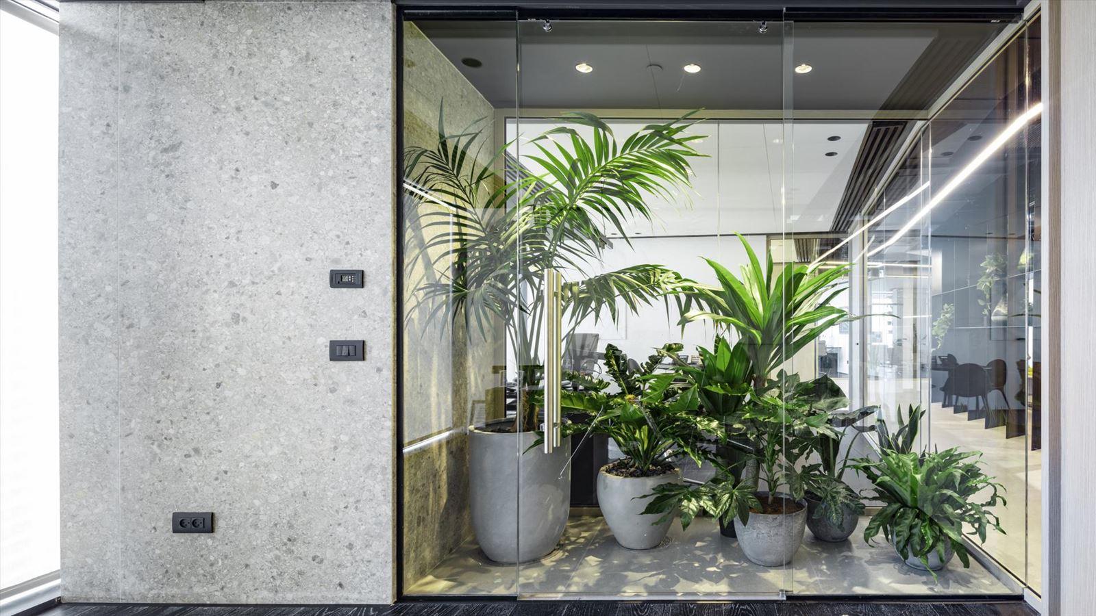 Fortissimo Offices – Tel Aviv גופי תאורה מיוחדים על צמחיית המשרד נעשה על ידי דורי קמחי